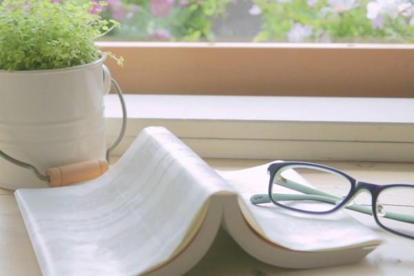 窓で読書する