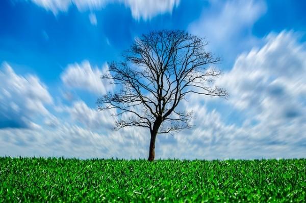 青い空と緑の風景