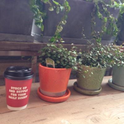 植物のあるカウンタースペース
