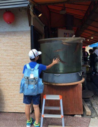 函館市場イカの水槽