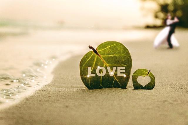 coast-love